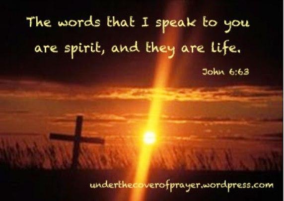 Image result for john 6:63