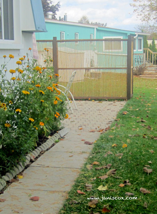 spring-backyard